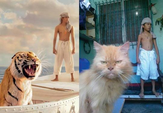 funny-Life-Pi-tiger-boat-kid-cat