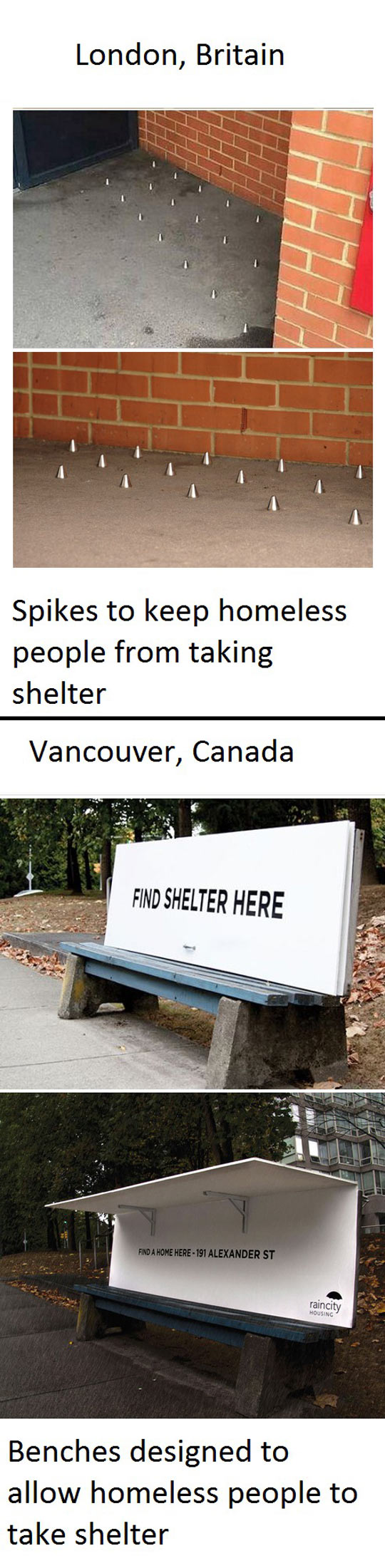 Kindness Once Again Spotted In Canada
