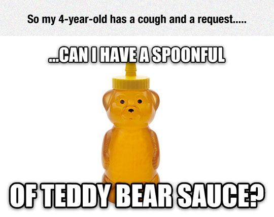 funny-Teddy-bear-sauce-honey