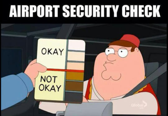 funny-airport-security-check-color