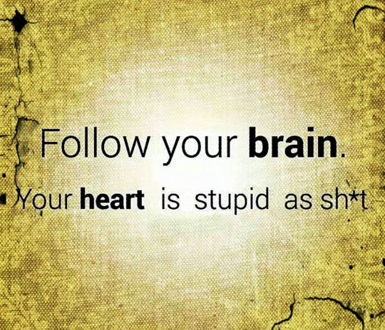 funny-brain-follow-heart-stupid