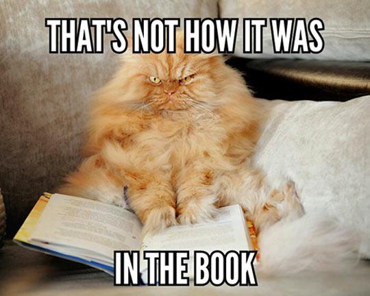 funny-cat-mad-book-movie