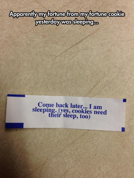funny-cookie-fortune-sleeping-wisdom