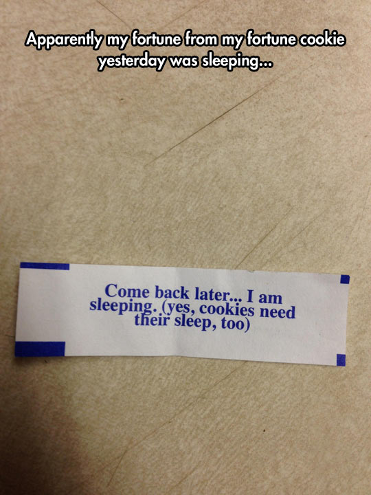 Lazy Fortune Cookie