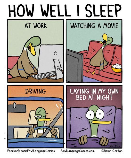 funny-duck-bed-sleeping-comic