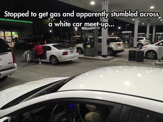 White Car Reunion