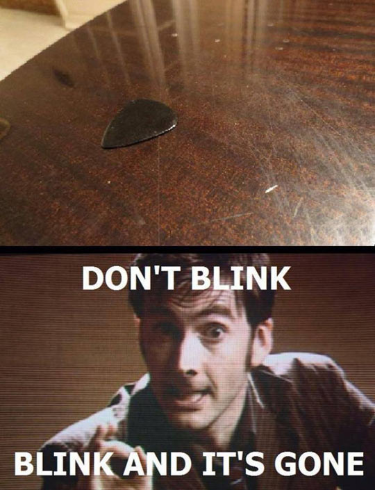 funny-guitarists-pick-blink-disappear