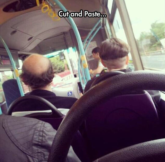 funny-hair-cut-bald-bus