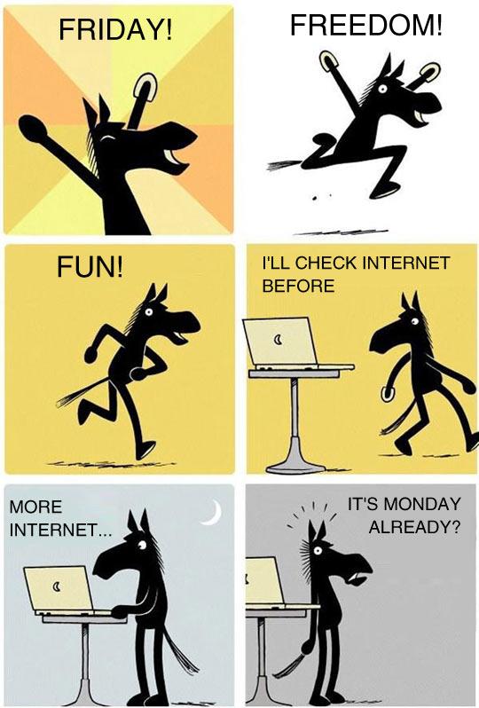 funny-horse-week-end-Internet