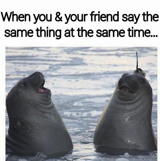 When Both Say The Same Thing