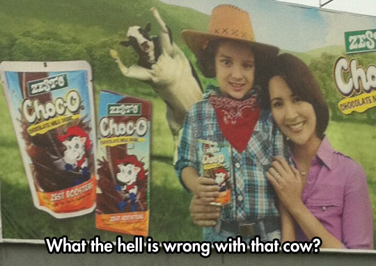 funny-sign-ad-dancing-cow