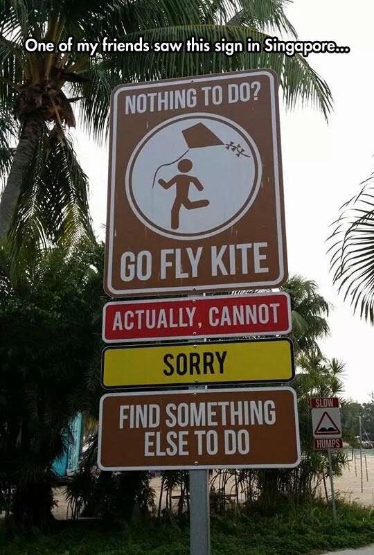 Go Fly Kite