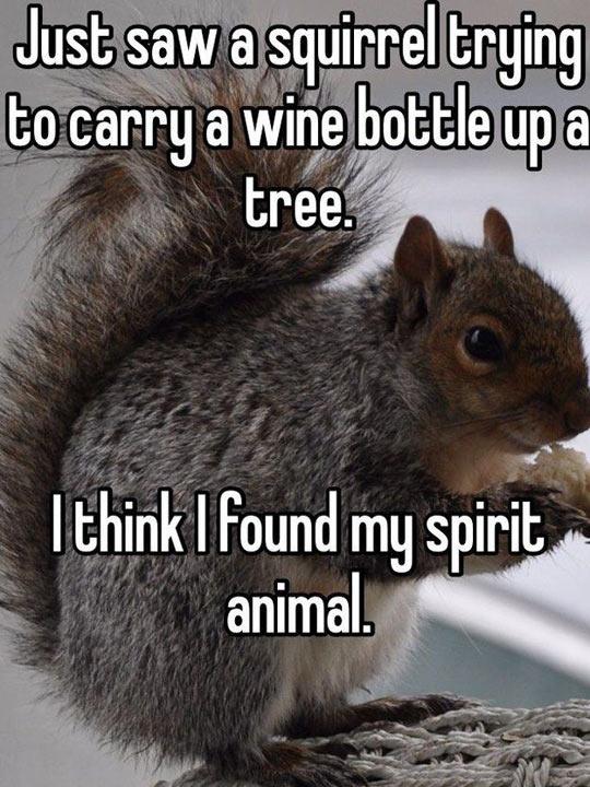 Found My Spirit Animal