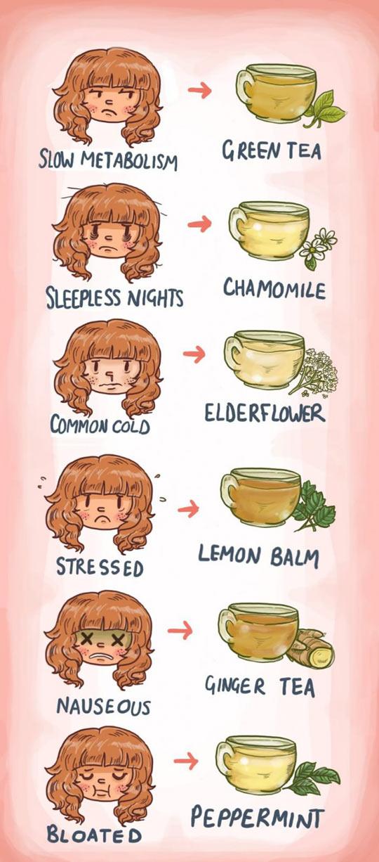 funny-tea-time-metabolism-sleepless