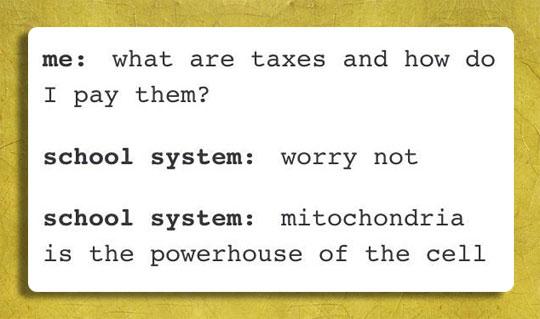 funny-teens-taxes-explanation-powerhouse