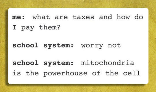 The School System And Taxes