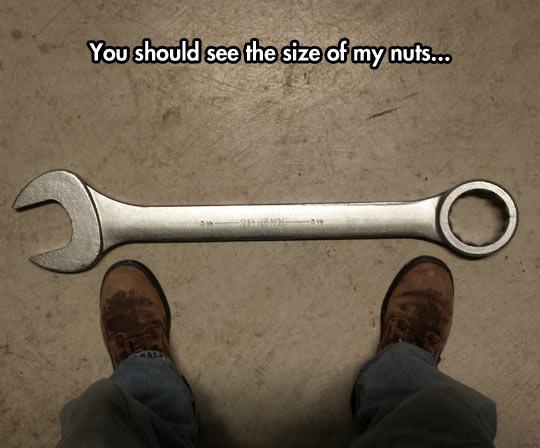 What A Tool, Bro