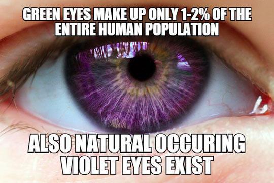 Violet Eyes Exist
