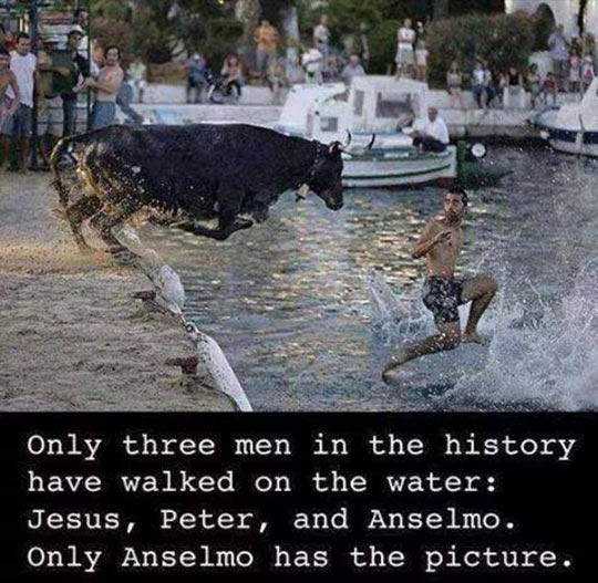 Only Anselmo Can Prove It
