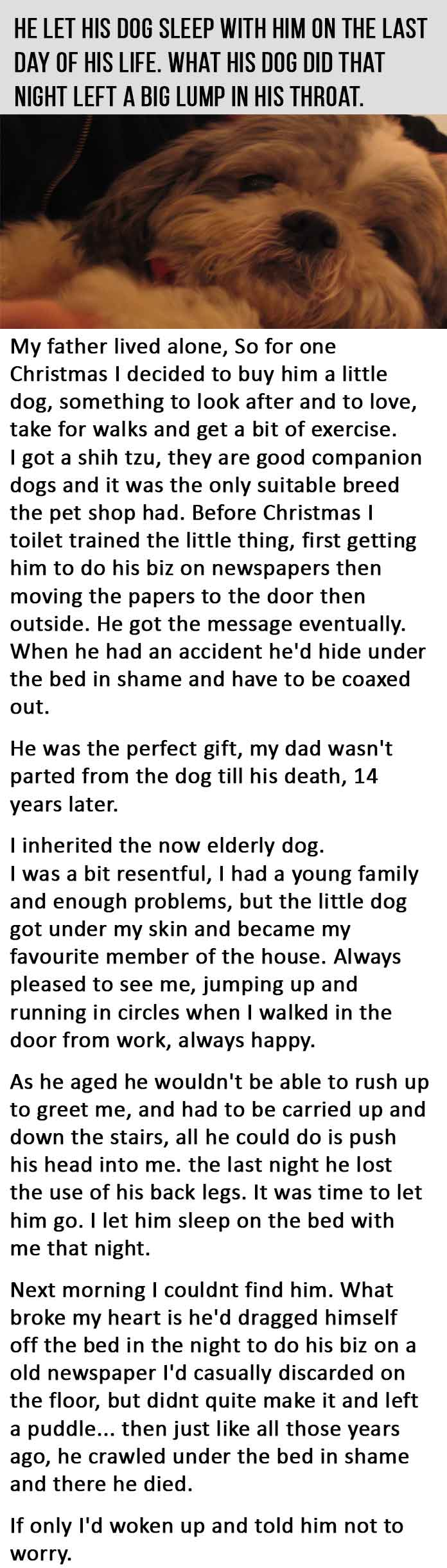 He Let His Dog Sleep With Him On The Last Day Of His Life. This Is Heartbreaking.