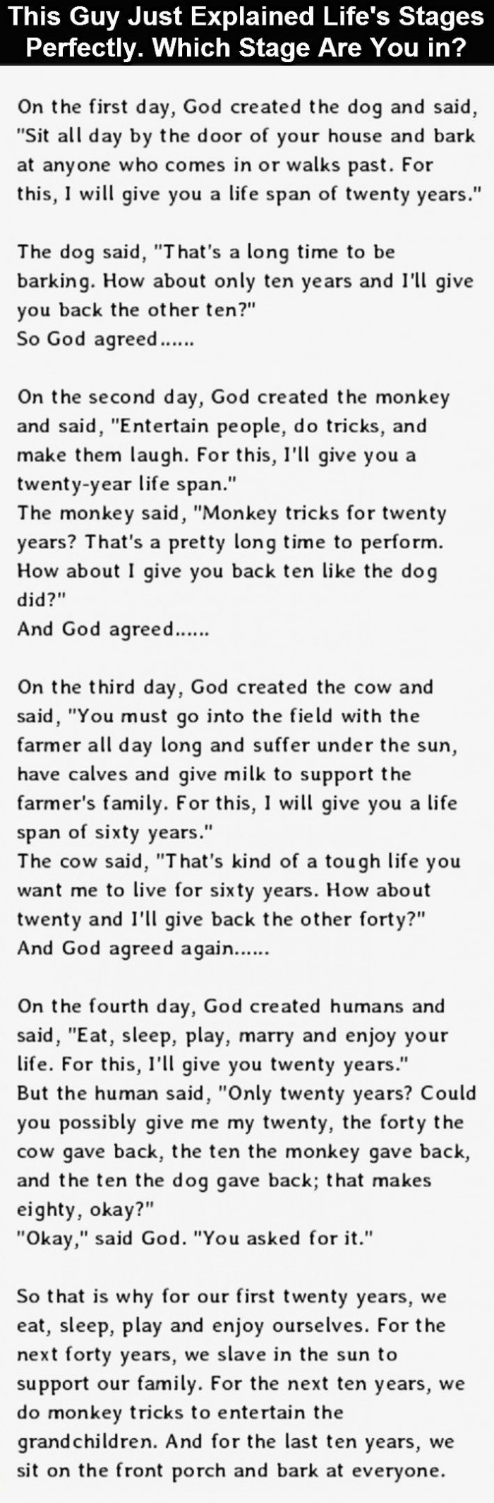 The Stages Of Life Explained. This Is So Accurate It Hurts.