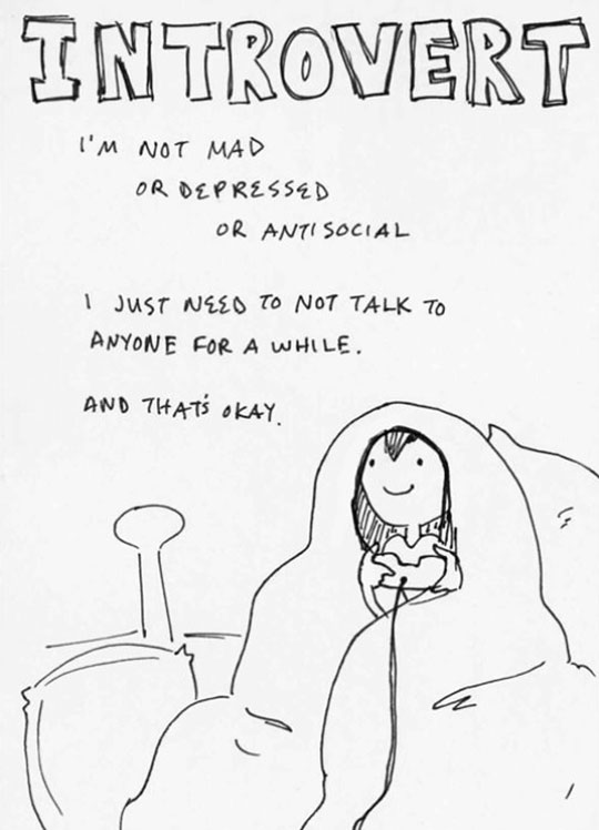 Introverts Are Really Something Special