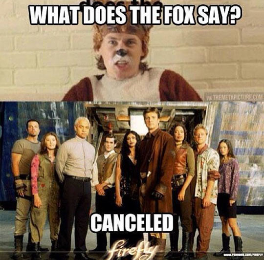 But Why Did You Say It, Fox