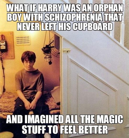 funny-Harry-Potter-schizophrenia-story