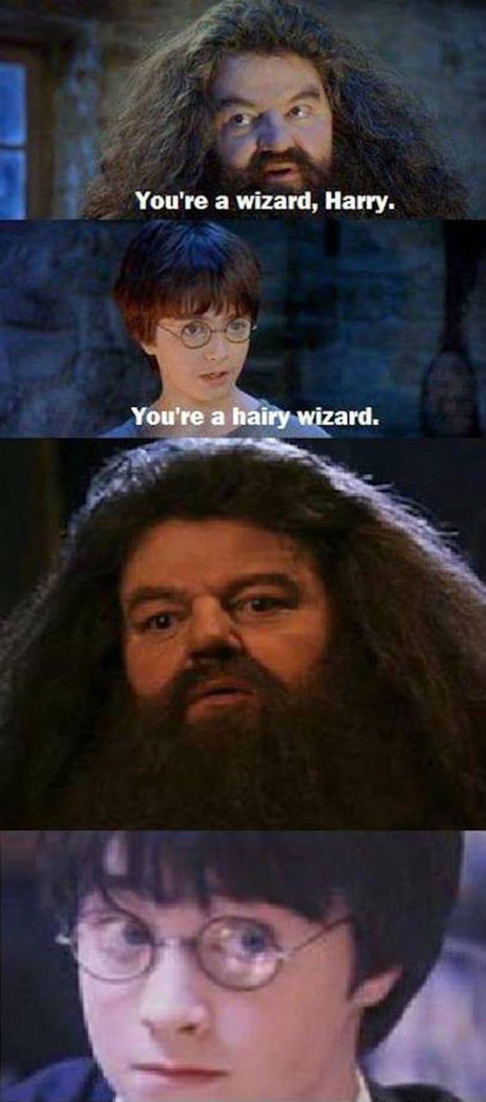 Harry, You Are A Wizard