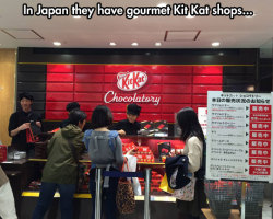 The Most Amazing Chocolatory