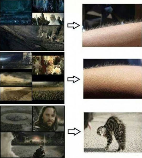 Greatest Lord Of The Rings Moments