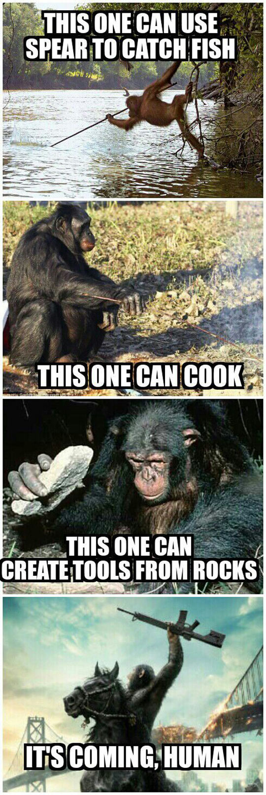 funny-Rise-Planets-Apes-learning
