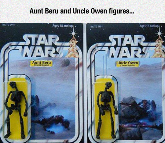 Aunt Beru And Uncle Owen Figures