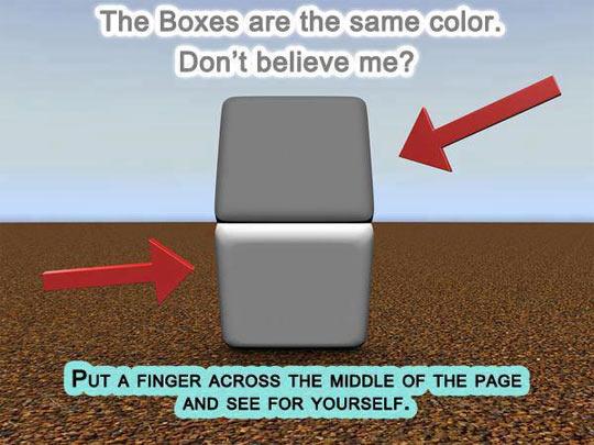 Incredible Color Box Illusion