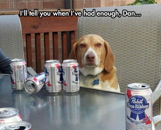 He Had 28, In Dog Beers