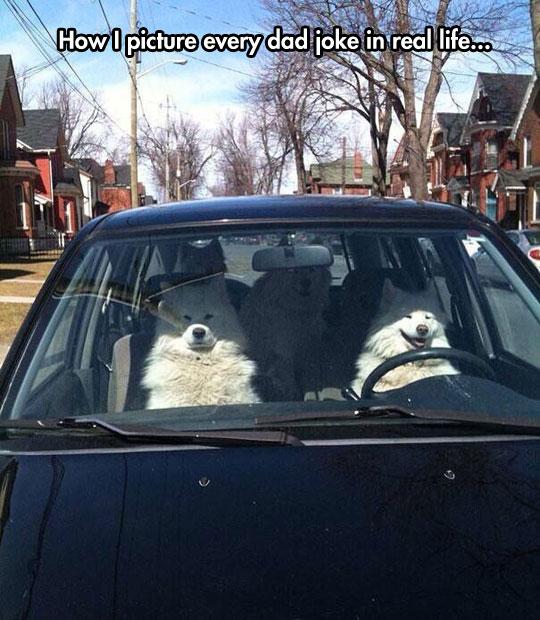 Just Keep Driving, Dad