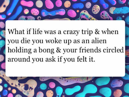 Life Is Just A Trip
