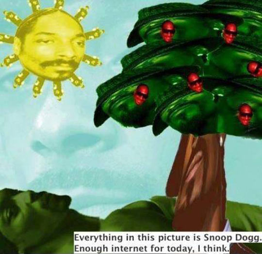 When The Only Thing You See Is Snoop Dogg