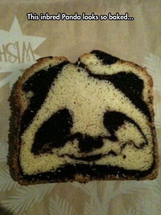 Pandas Everywhere