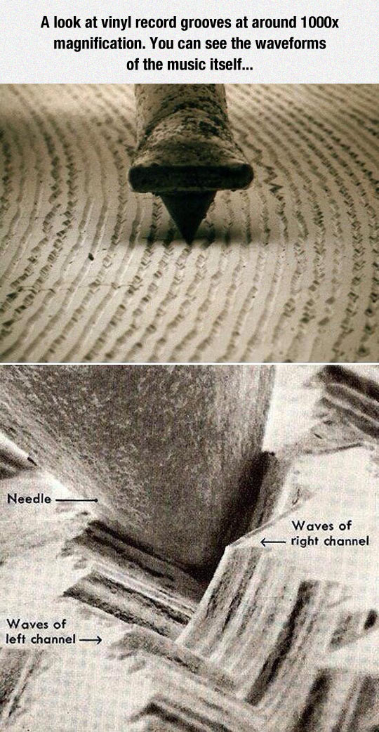 funny-vinyl-record-grooves-needle