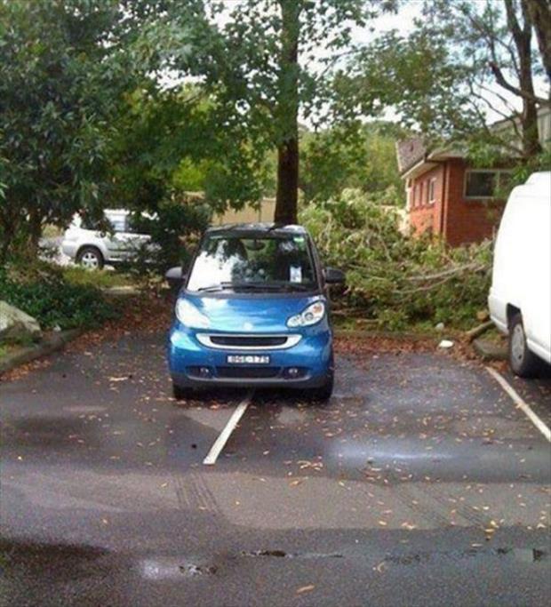 parking-6