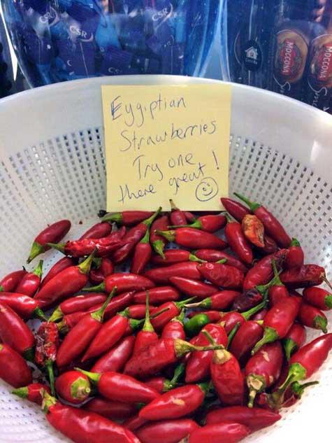 seems-legit-strawberry-chili