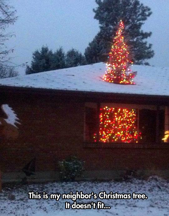 A Giant Christmas Tree