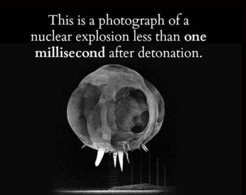 Terrifying-facts-20