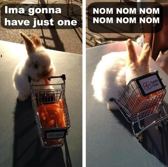 Tiny Bunny Has No Self-Control