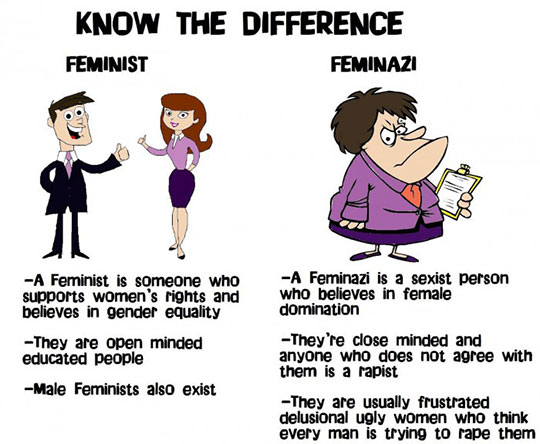 cool-cartoon-difference-feminist-bad-good