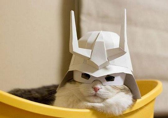 cool-cat-paper-hat-samurai