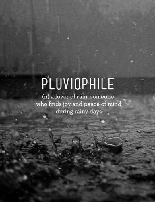 cool-definition-meaning-love-rain-pluviophile