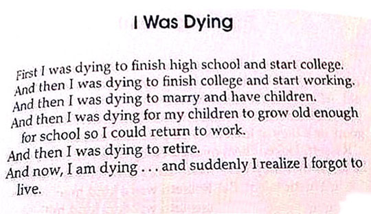 cool-life-story-book-dying