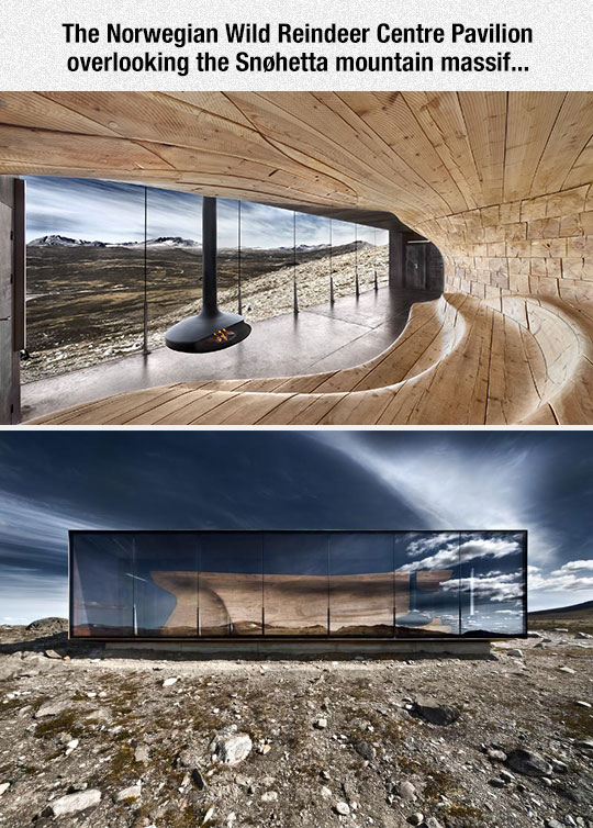cool-observation-room-Norway-design-award